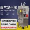 燃气蒸汽发生器锅