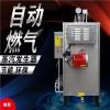 蒸汽发生器厂家节能环保燃气蒸汽发生器报价