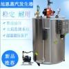 洗浴服务ZHONGXING使用蒸汽锅炉